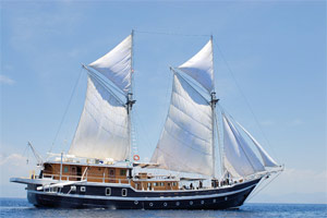 Seahorse Liveaboard in Indonesia