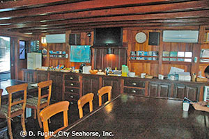 SMY Ondina Indonesia liveaboard dive deck