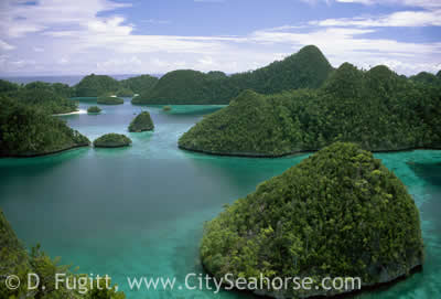 Raja Ampat Islands, Rock Islands Lagoon - Wayag