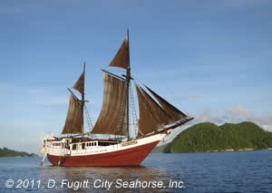 Liveaboard trip discount